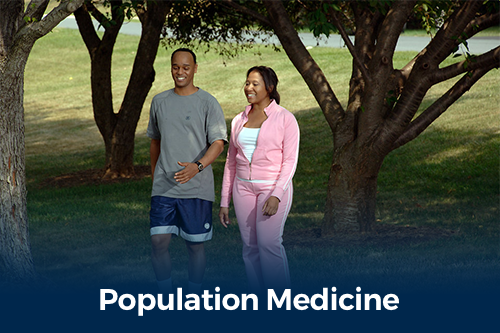 population medicine