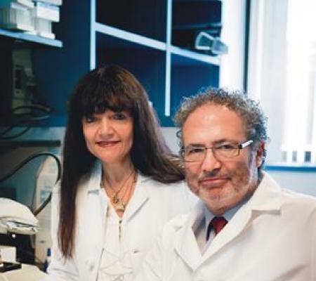 Maria Castro and Pedro Lowenstein