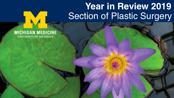 Year in Review 2019: Section of Plastic Surgery