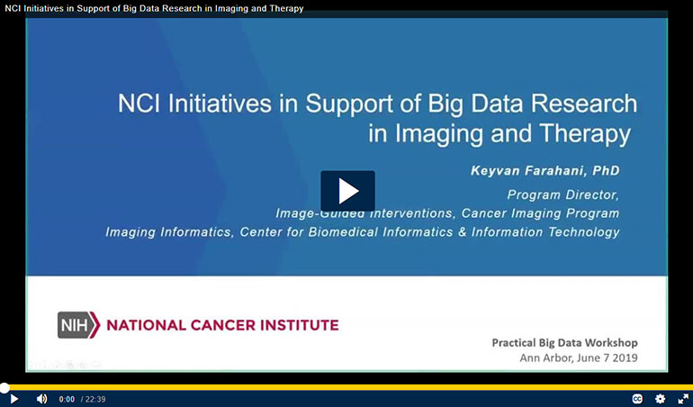 NCI initiatives in support of big data research in imaging and therapy