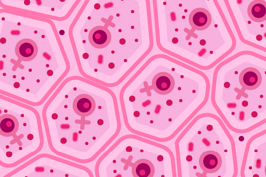 Why Women Get Autoimmune Diseases Far More Often Than Men