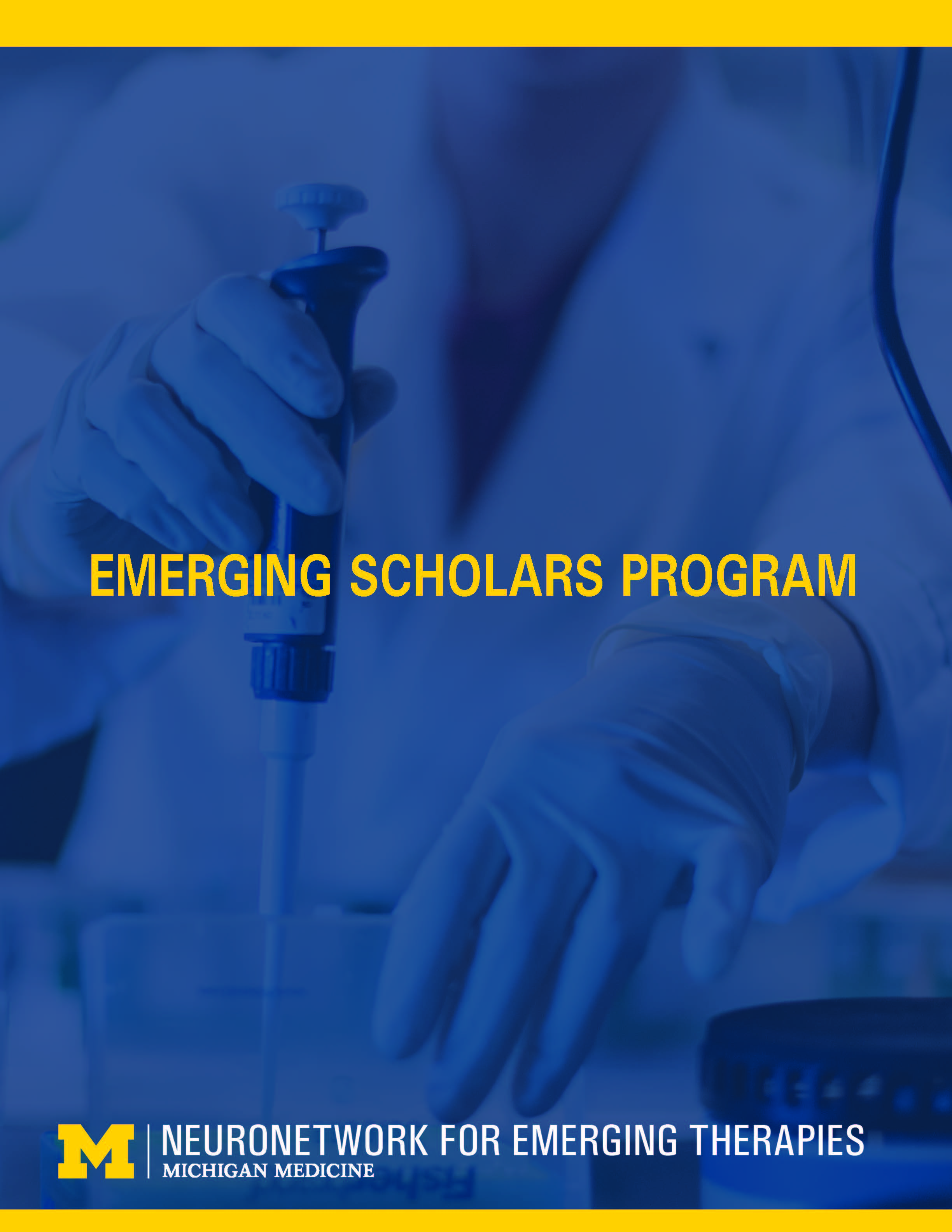 NeuroNetwork for Emerging Therapies Emerging Scholars Brochure Cover