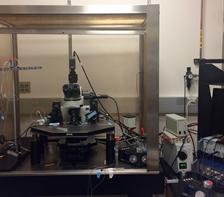optogenetics equipment