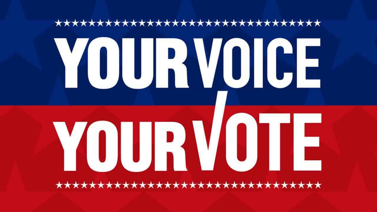 Voting information in Michigan