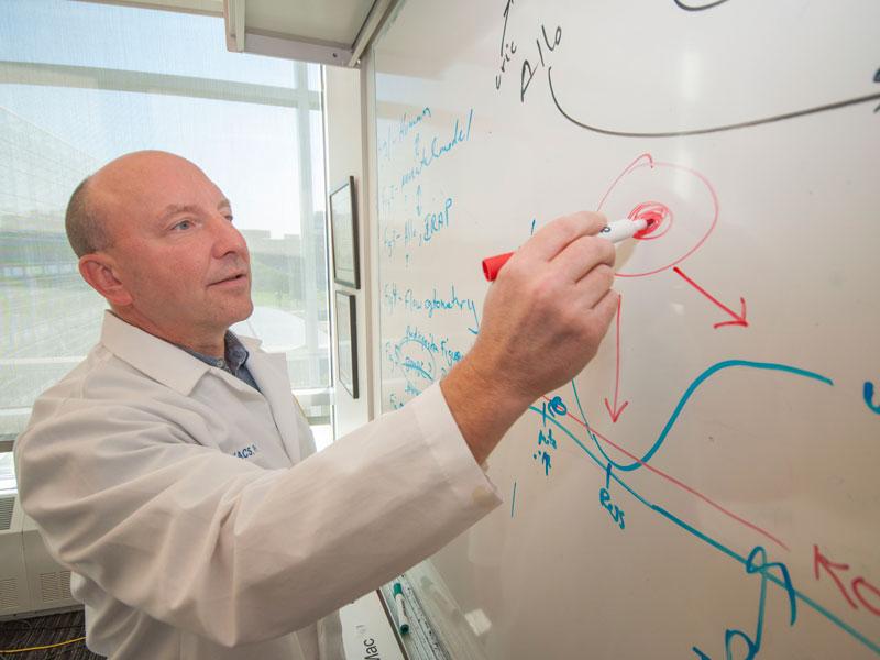 Nicholas W. Lukacs, Ph.D., draws on a whiteboard
