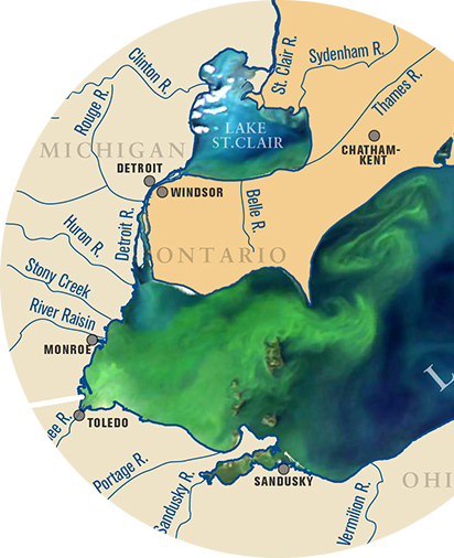 Harmful algal blooms in Lake Erie and Lake St. Claire: Figure obtained from Michigan Sea Grant.