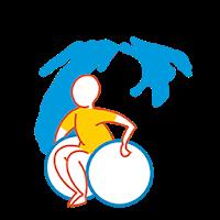 wheelchair in michigan logo