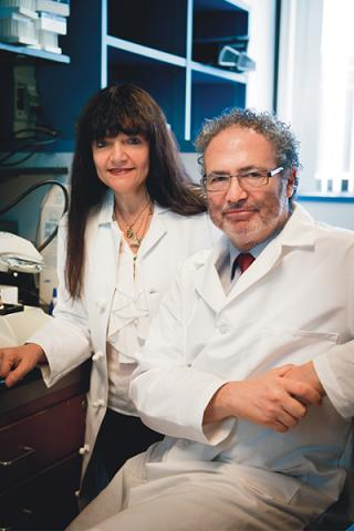Drs. Castro and Lowenstein