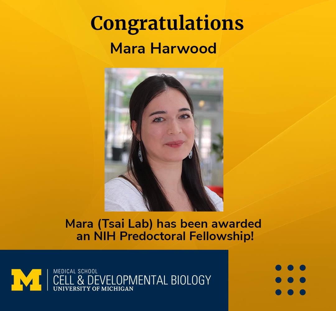 Mara Harwood, CDB research