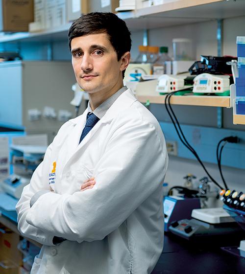 Dr. Thomas Wubben