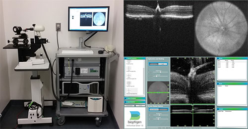 Bioptigen Envisu Preclinical Spectral Domain Optical Coherence Imaging System