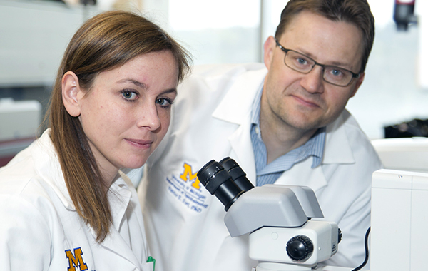 Anne Ruebsam, MD, from Germany, in Diabetic Retinopathy Laboratory of Patrice Fort, PhD, Kellogg faculty