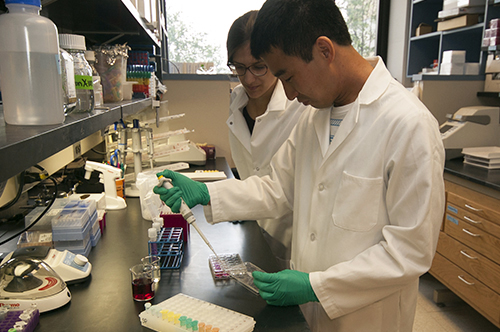 Graduate students working in the lab