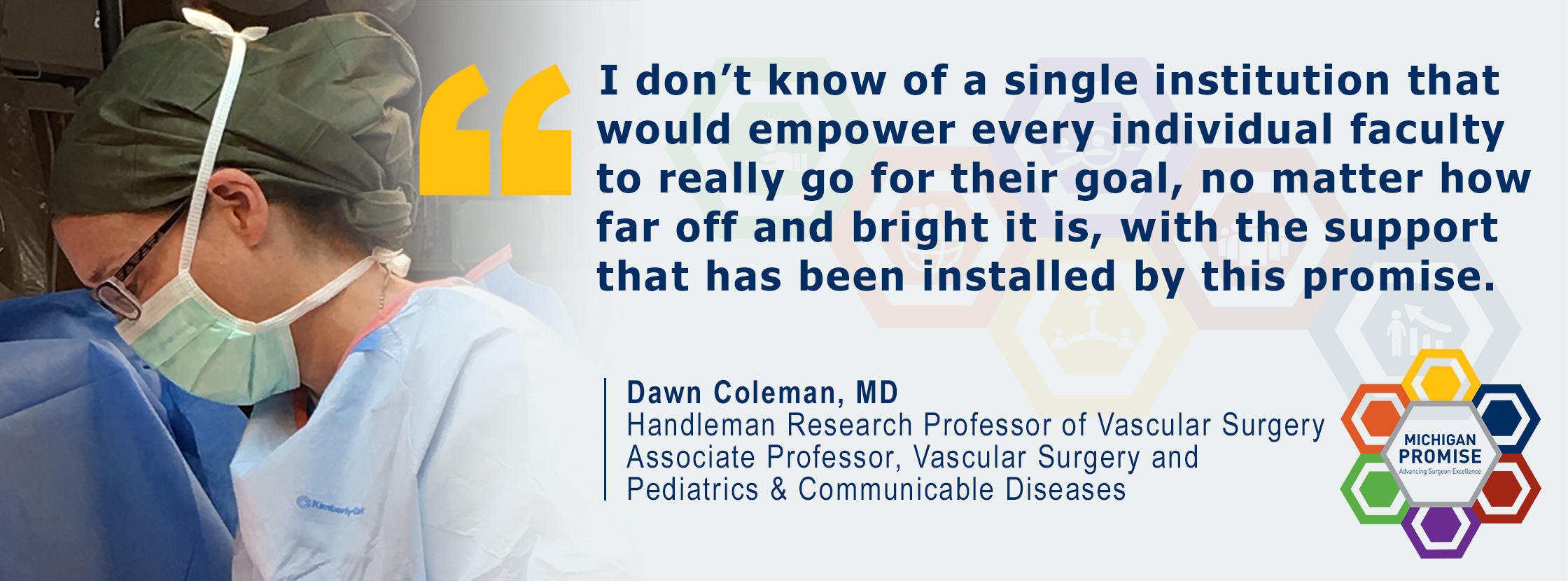 """""""I don't know of a single institution that would empower every individual faculty to really go for their goal, no matter how far off and bright it is, with the support that has been installed by this promise."""" Dawn Coleman, MD"""