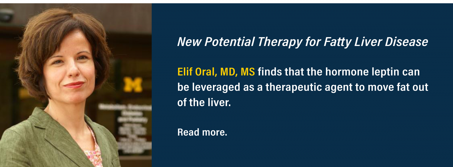 New Potential Therapy for Fatty Liver Disease