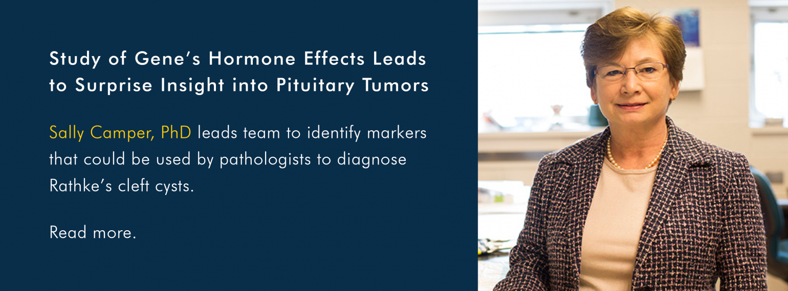 Study of Gene's Hormone Effects Leads to Surprise Insight into Pituitary Tumors