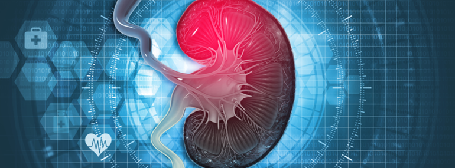 Supporting and Improving the U.S. Chronic Kidney Disease Surveillance System