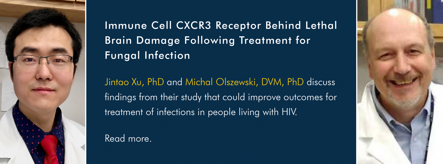 Immune Cell CXCR3 Receptor Behind Lethal Brain Damage Following Treatment for Fungal Infection