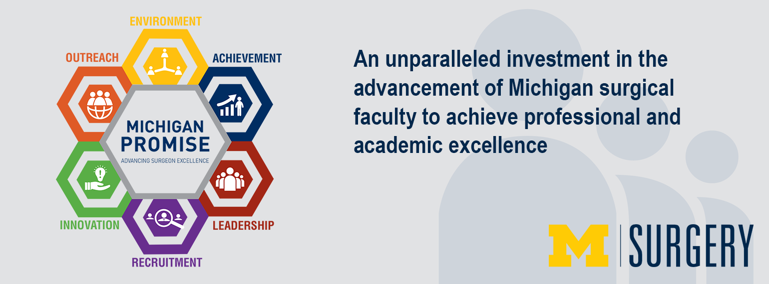 The Michigan Promise: An unparalleled investment in the advancement of Michigan surgical faculty to achieve professional and academic excellence