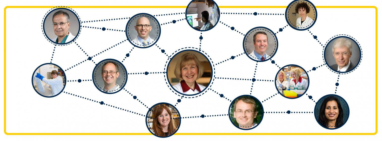NeuroNetwork for Emerging Therapies Dr. Eva Feldman, Dr. Benjamin Reubinoff, Dr. Stephen Goutman, Dr. Ben Murdock, Dr. Matthias Kretzler, Dr. Brian Callaghan, Dr. Robert Nelson, Dr. Rodica Pop-Busui, Dr. Bhramar Mukherjee