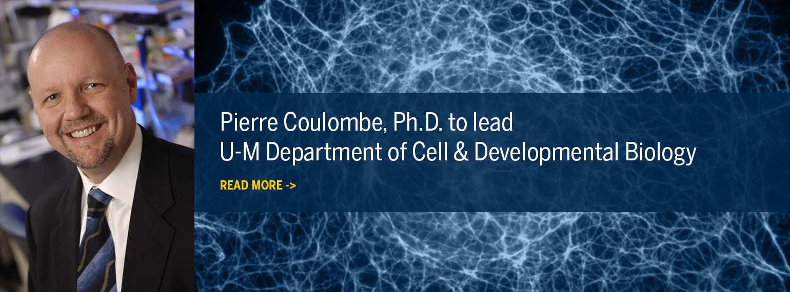 Pierre Coulombe, Ph.D., to lead U-M Department of Cell & Developmental Biology