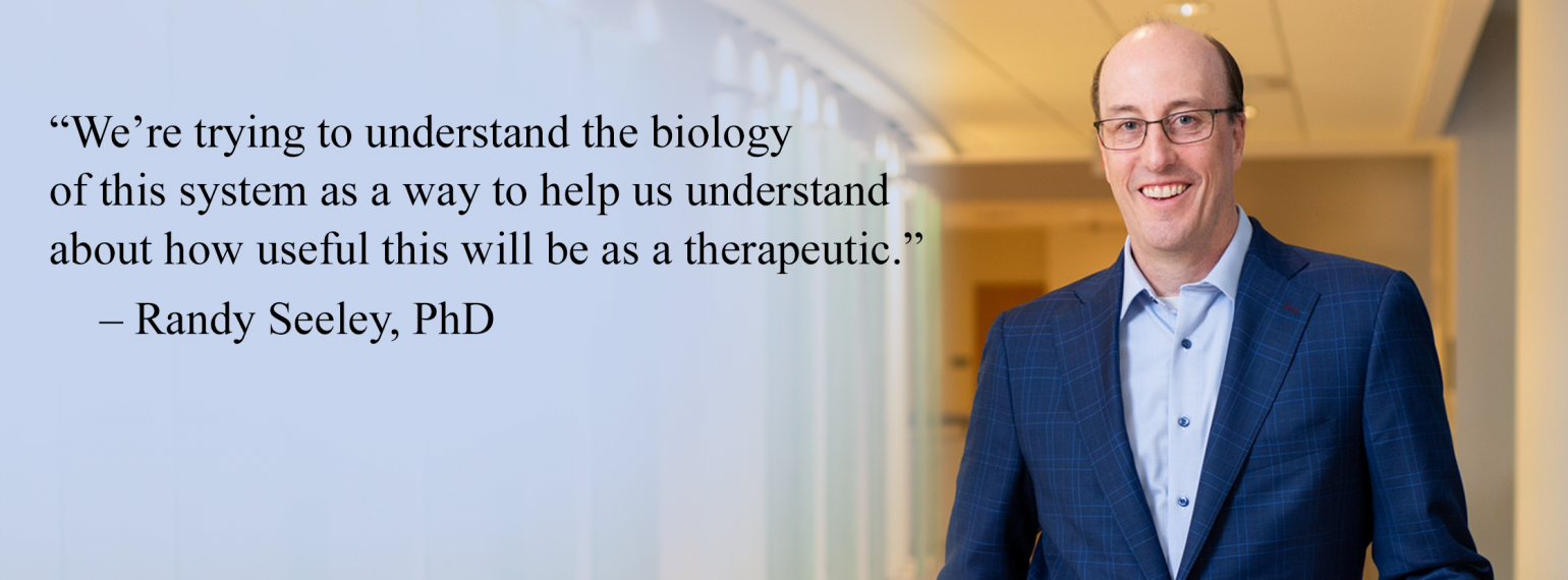 """We're trying to understand the biology of this system as a way to help us understand about how useful this will be as a therapeutic."" – Randy Seeley, PhD"