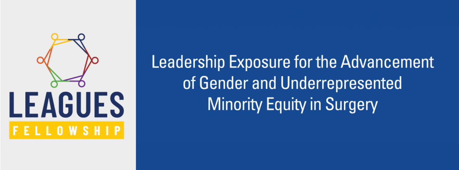 LEAGUES Fellowship: Leadership Exposure for the Advancement of Gender and Underrepresented Minority Equity in Surgery