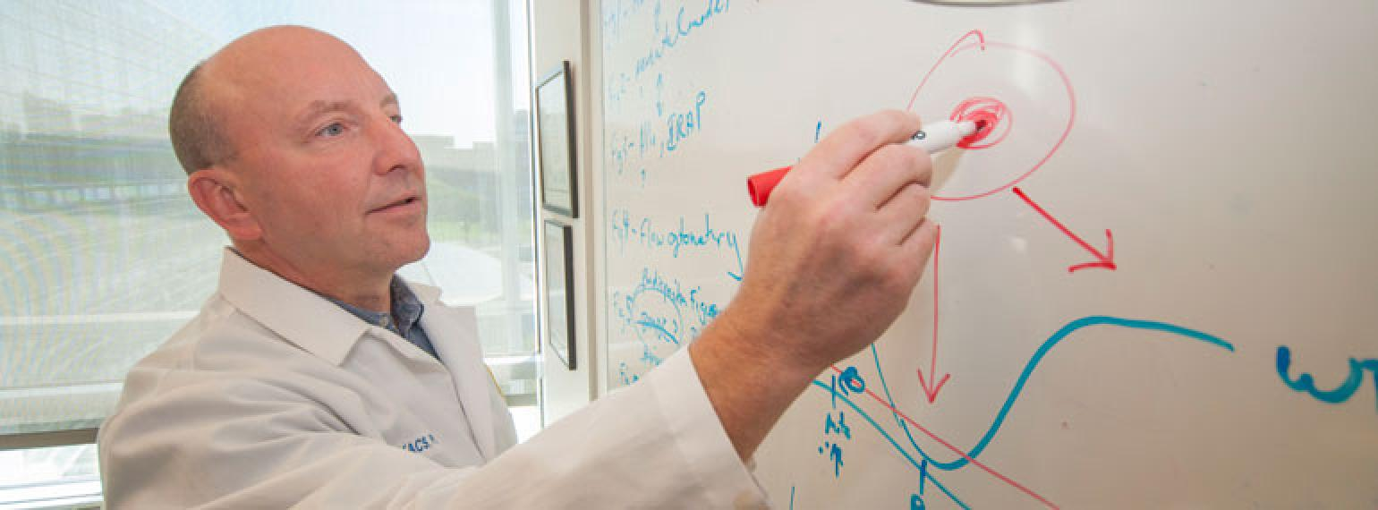 Nick Lukacs, Ph.D., draws on a whiteboard