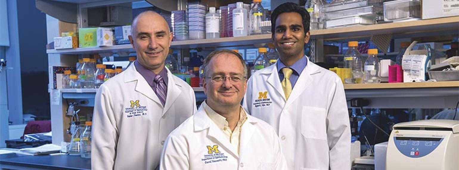 Hakan Demirci, MD, David Antonetti, PhD, Rajesh Rao, MD