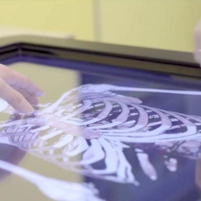 Interactive Skeleton Display
