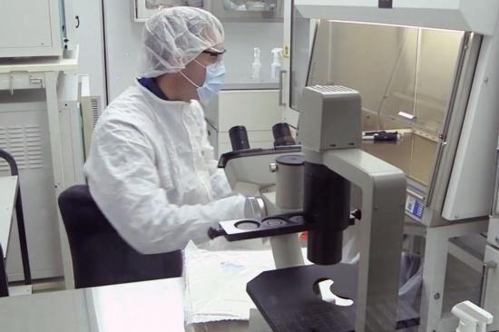 Lab member working in the lab
