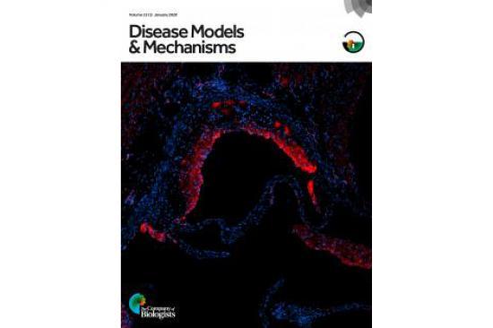 Disease Models & Mechanisms cover