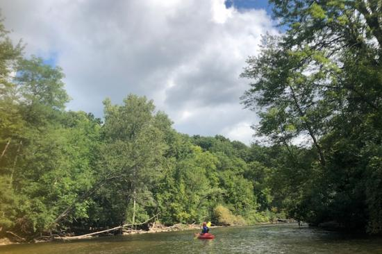 Photo of kayakers on  Huron River