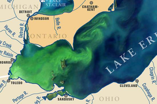 photo of Lake Erie algae bloom taken from Michigan Sea Grant