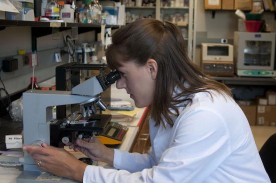 Jobst Lab member working