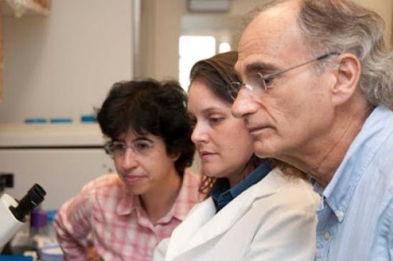 Dr. Cascalho, Dr. Platt, and Lab Member