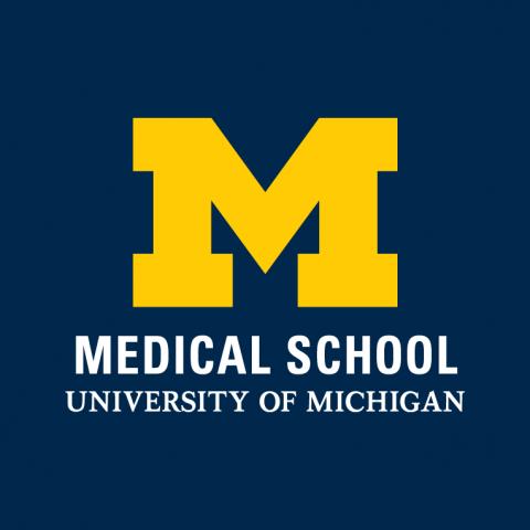 University of Michigan Block M Logo