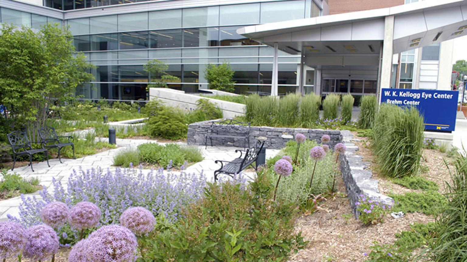 Garden at the Kellogg Eye Center