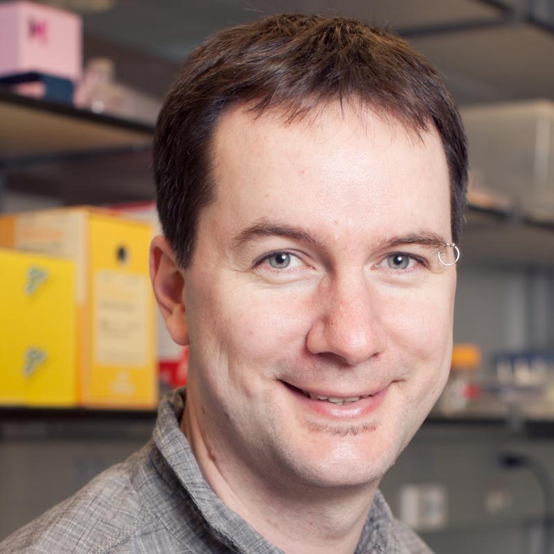 Andreas Hochwagen, Ph.D.