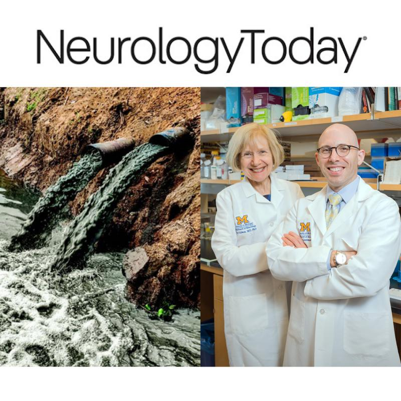 graphic that links to a Neurology Today article that highlights Dr. Eva Feldman & Dr. Stephen Goutmans Environmental Statement on ALS in JAMA
