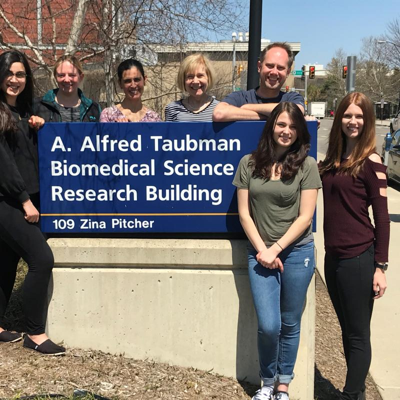 Tauber Intern Students 2017-18