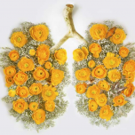 Graphic showing lungs made out of flowers