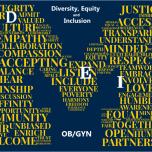 OBGYN DEI Vision Wordle