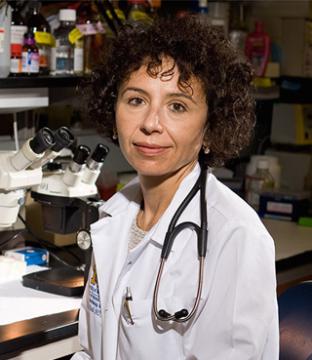 Rodica Busui, MD, PhD