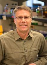 David C. Kohrman, Ph.D.