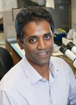 Sundeep Kalantry, Ph.D.