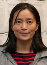 Jinju Li