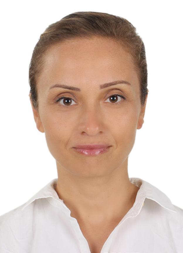 Gulcin Akinci