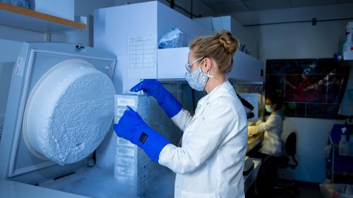 Dr. Sarah Elzinga works with Biorepository samples at the NeuroNetwork for Emerging Therapies lab