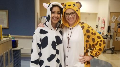 pediatric critical care fellows dressed in animal costumes